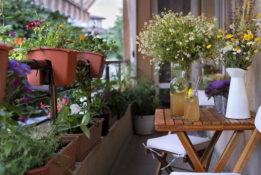 Lieblich Balkon Mit Pflanzen Blumen Und Bank