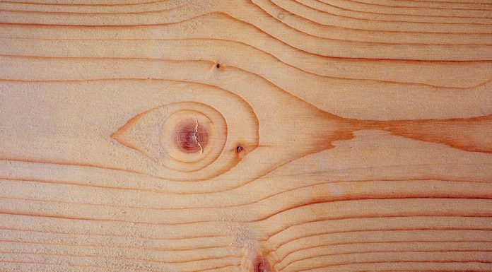 Holzarten Die Vorteile Und Nachteile Beim Baustoff Holz