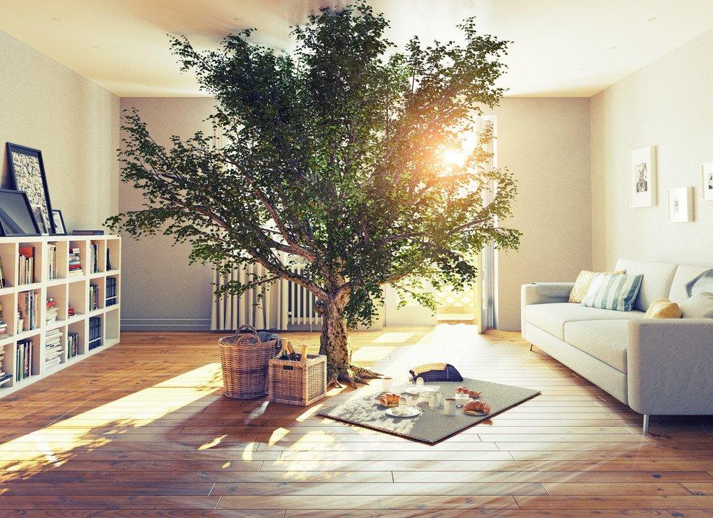 Wohnen ökologisch Ratgeber Haus Garten