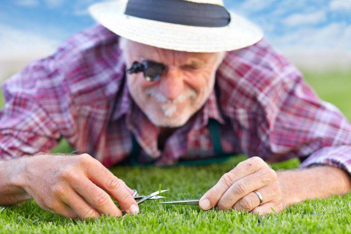 Rasenpflege im Frühling - Ratgeber