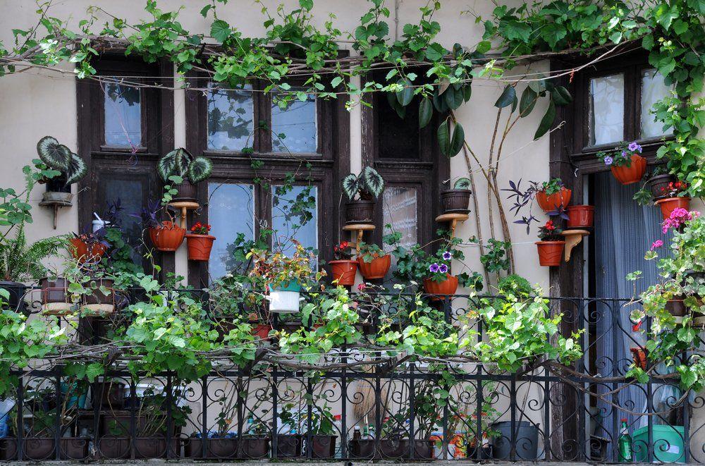 ratgeber balkon gestalten ratgeber haus garten. Black Bedroom Furniture Sets. Home Design Ideas