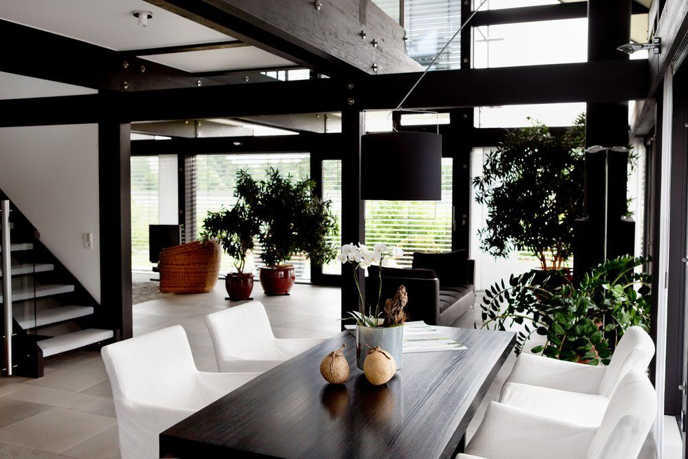 Ratgeber zimmerpflanzen ratgeber haus garten for Zimmerpflanzen wohnzimmer