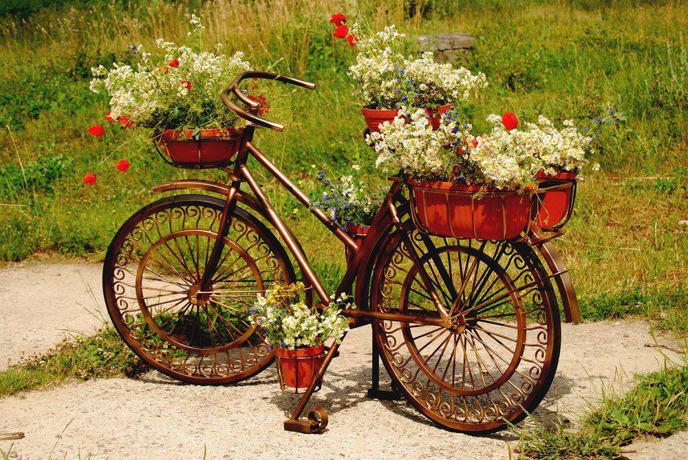 Gartendekoration fahrrad ratgeber haus garten - Ratgeber haus garten ...