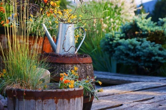 Mit Kubelpflanzen Die Terrasse Aufwerten Ratgeber Haus Garten