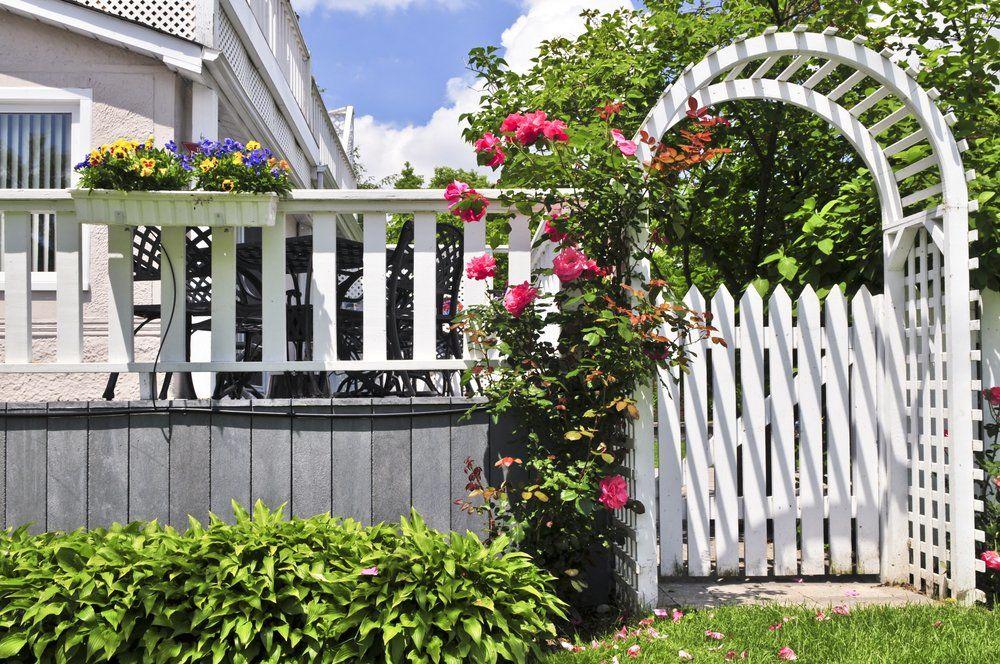 Rosenbogen Romantik Auf Dem Gartenweg Ratgeber Haus Garten