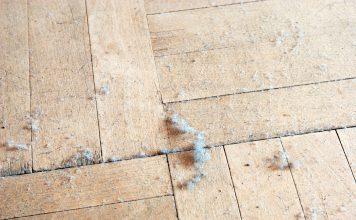 Hausstaub Staub Haus Milben Gefahr
