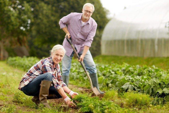 Gartenbau Nachbarn Hobby