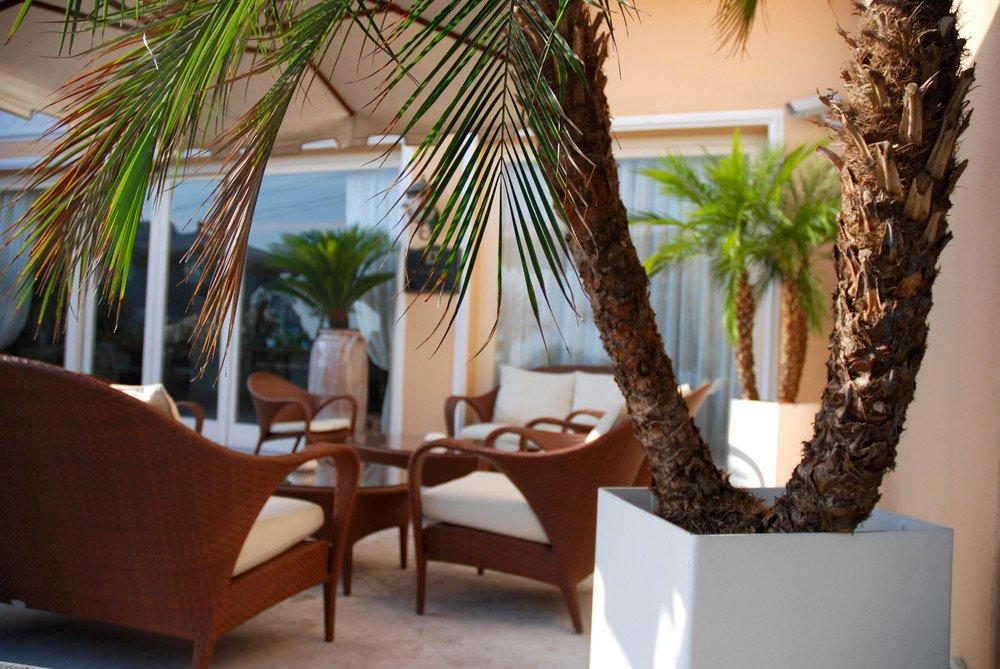 exotische gartenpflanzen karibik f r zu hause ratgeber. Black Bedroom Furniture Sets. Home Design Ideas