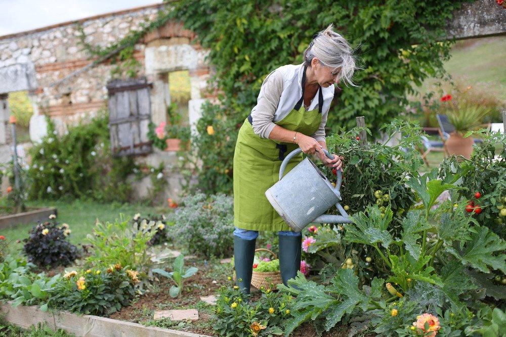100% Bio - der eigene Gemüsegarten · Ratgeber Haus & Garten