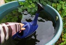 Regenwassernutzung Regnwassertonne Niederschlag